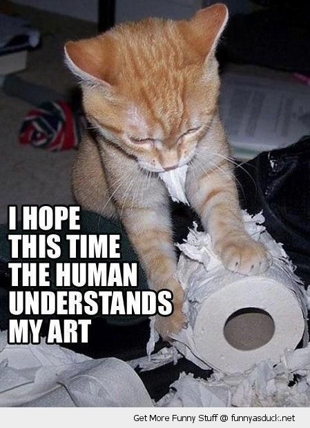 ripping toilet paper cat lolcat animal humans understand art funny pics pictures pic picture image photo images photos lol