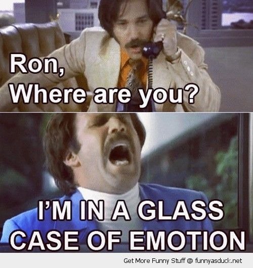 anchorman ron burgendy will ferral movie scene phone booth glass case emotion funny pics pictures pic picture image photo images photos lol