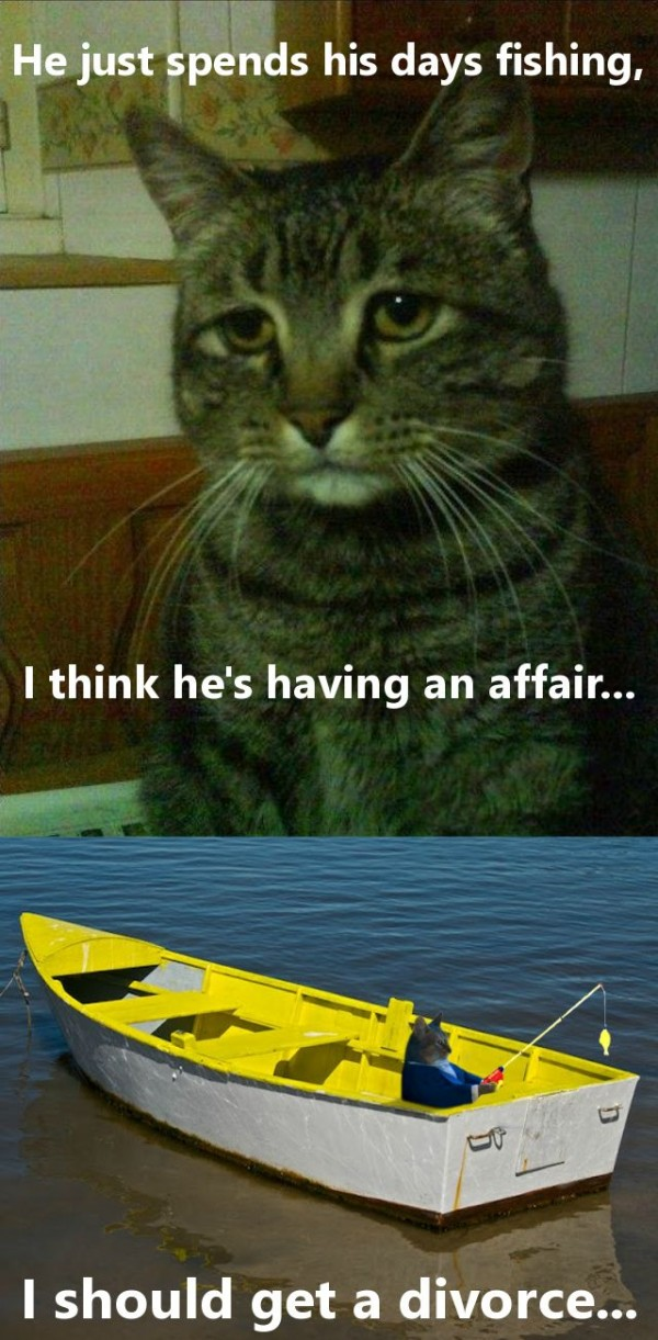 sad depressed cat affair fishing boat divorce animals lolcat funny pics pictures pic picture image photo images photos lol