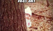 shocked surprised kid baby tree say santa claus funny pics pictures pic picture image photo images photos lol