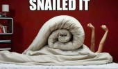 snailed it duvet cover bed nailed it funny pics pictures pic picture image photo images photos lol