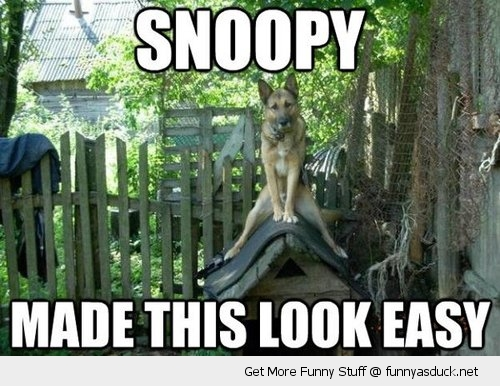 dog sitting kennel animal snoopy made this easy funny pics pictures pic picture image photo images photos lol