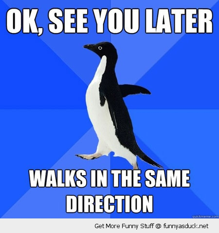 socially awkward penguin meme see you later funny pics pictures pic picture image photo images photos lol