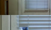 soon cat lolcat animal hiding peeking looking window blind door funny pics pictures pic picture image photo images photos lol