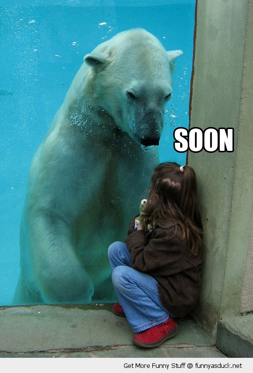 soon polar bear girl animal zoo funny pics pictures pic picture image photo images photos lol