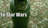 direct me star wars convention cat bin trash r2 d2 animal funny pics pictures pic picture image photo images photos lol