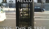 yes this is tree phone box hello funny pics pictures pic picture image photo images photos lol