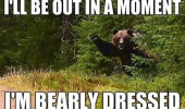 bearly dressed waving bear forest pun joke animal funny pics pictures pic picture image photo images photos lol