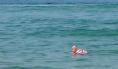 wheres waldo wally hiding under water whole time sea ocean funny pics pictures pic picture image photo images photos lol