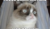 angry grumpy cat lolcat animal damn mayans lied to me 2012 apocalypse survived funny pics pictures pic picture image photo images photos lol