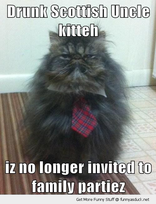 angry grumpt cat lolcat animal scottish drunk uncle tartan tie no longer invited parties funny pics pictures pic picture image photo images photos lol