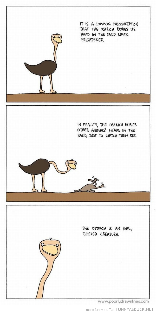 animal head sand ostrich bird comic evil twisted creature funny pics pictures pic picture image photo images photos lol