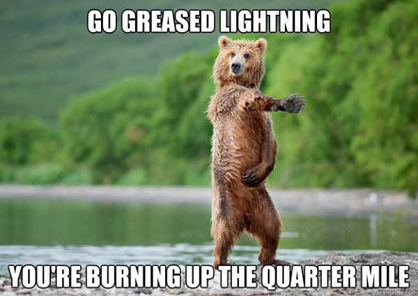 bear animal dancing water river go greased lightning film move song funny pics pictures pic picture image photo images photos lol