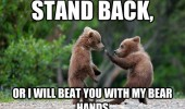 stand back beat you bear hands cubs fighting forest animals funny pics pictures pic picture image photo images photos lol