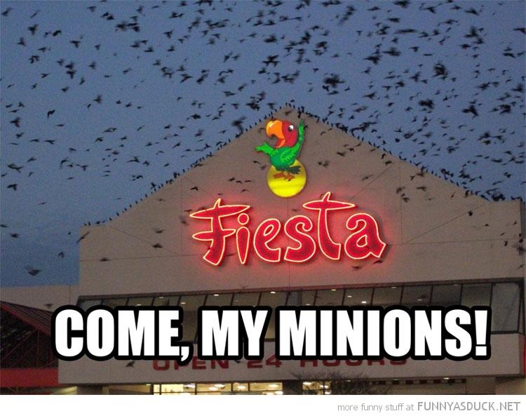 Come, My Minions