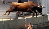 bull animal running chasing girl jumping canal water river cannonbull funny pics pictures pic picture image photo images photos lol