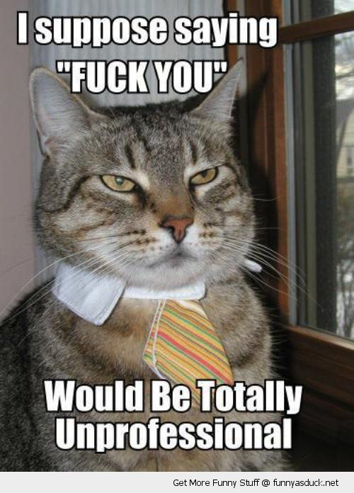funny-business-cat-shirt-tie-fuck-you-un