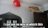 cat lolcat animal balloon walking door carefully laid plans coud ever fail funny pics pictures pic picture image photo images photos lol