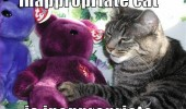 cat animal lolcat touching teddy bear toy inappropriate funny pics pictures pic picture image photo images photos lol