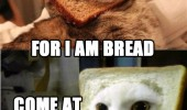 cats lolcats animals bread head fear me come at me bro funny pics pictures pic picture image photo images photos lol