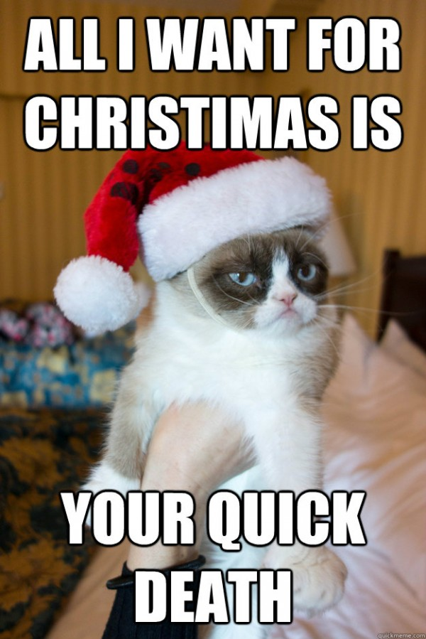 grumpt angry cat lolcat animal santa hat all want xmas christmas quick death funny pics pictures pic picture image photo images photos lol