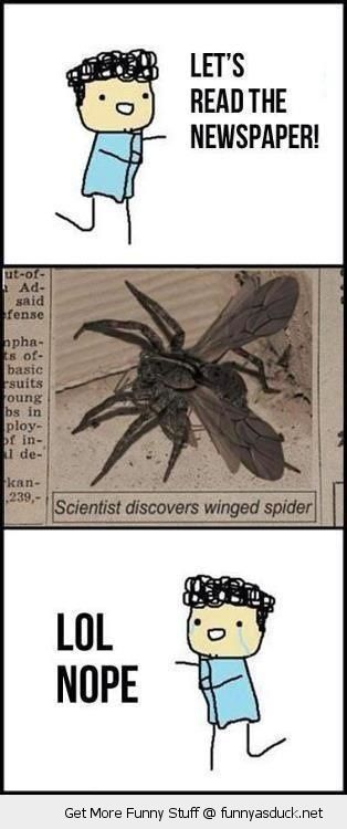 comic lets read paper spider with wings lol nope insect crying funny pics pictures pic picture image photo images photos lol