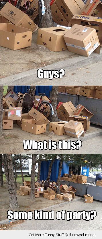 confused cardboard box face trash garbage what is this guys some kind party funny pics pictures pic picture image photo images photos lol