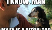 consoling canine dog paw mans shoulder i know man my ex bitch too funny pics pictures pic picture image photo images photos lol