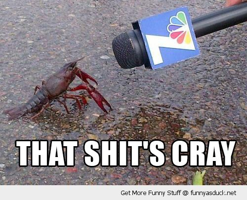 crayfish lobster animal talking microphone that shits cray funny pics pictures pic picture image photo images photos lol