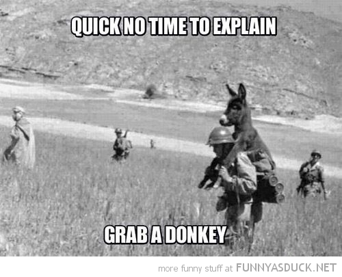 donkey animal soldiers back no time to explain grab funny pics pictures pic picture image photo images photos lol
