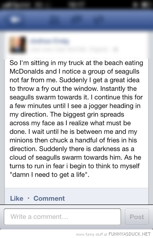 facebook status jogger fries seagulls funny pics pictures pic picture image photo images photos lol