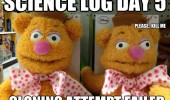 messed up fozzy bear muppets toy kill me science fail cloning attempt  funny pics pictures pic picture image photo images photos lol
