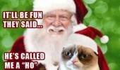 grumpy angry cat lolcat animal go see santa xmas christmas called me a ho three times funny pics pictures pic picture image photo images photos lol