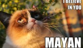 grumpy angry cat animal lolcat believe you mayan funny pics pictures pic picture image photo images photos lol