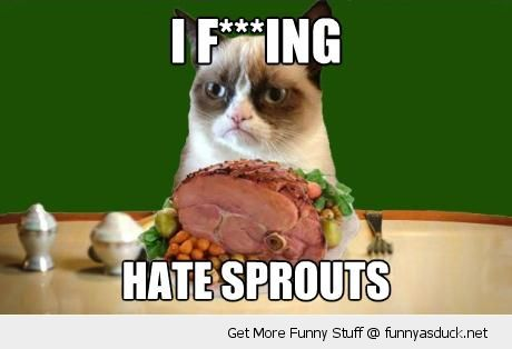 grumpy angry cat animal lolcat christmas dinner xmas hare sprouts funny pics pictures pic picture image photo images photos lol
