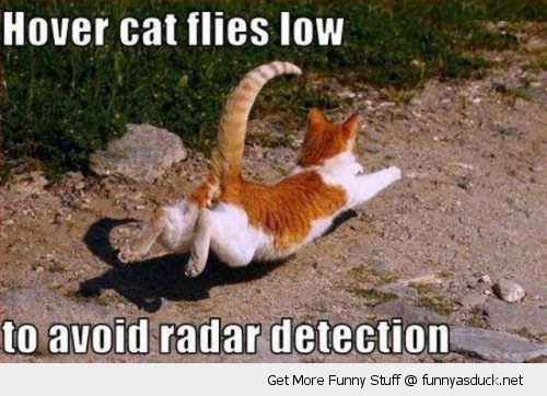 hover cat animal running jumping lolcat flies low avoid radar detection funny pics pictures pic picture image photo images photos lol