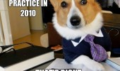 lawyer dog meme started practice 2010 14 years experience funny pics pictures pic picture image photo images photos lol