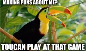 making puns about me bird tree toucan play that game animal joke funny pics pictures pic picture image photo images photos lol