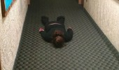 man boy student lying face down not drunk finals week funny pics pictures pic picture image photo images photos lol