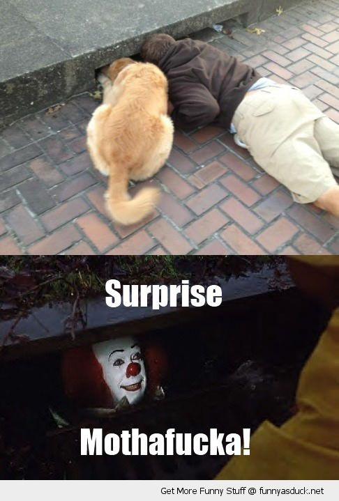 man dog animal looking down drain sewer pennywise clown it movie surprise motherfucker stephen king film funny pics pictures pic picture image photo images photos lol