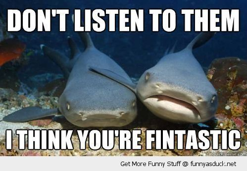 sad depressed shark animal fish ocean pun joke dont listen think fintastic funny pics pictures pic picture image photo images photos lol