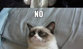 grumpy angry cat animal lolcat saw play game no okay meme rage comic funny pics pictures pic picture image photo images photos lol