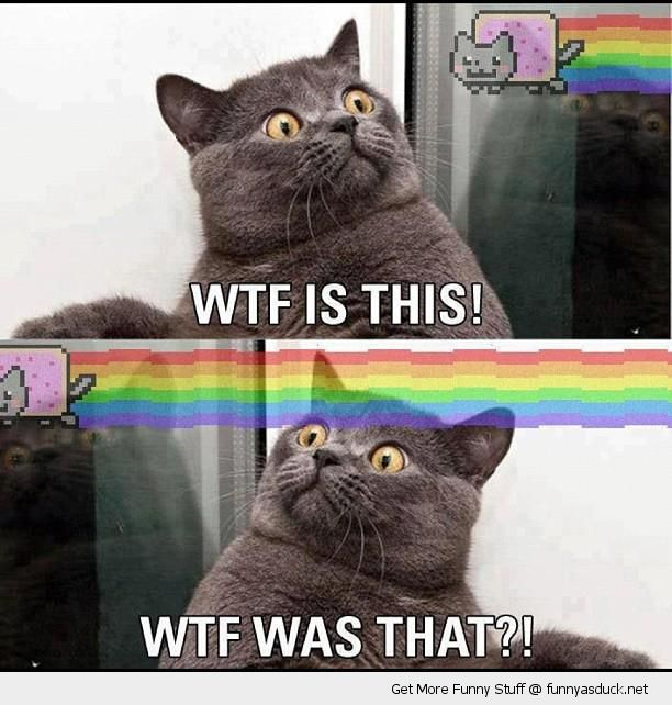 [Image: funny-shocked-surprised-nyan-cat-wtf-is-...t-pics.jpg]
