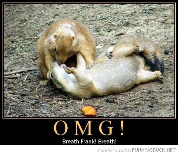 squirrel animal mouth to omg breath frank dying resuscitate funny pics pictures pic picture image photo images photos lol