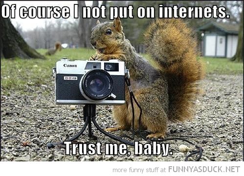 squirrel animal photographer course not internet trust me baby funny pics pictures pic picture image photo images photos lol