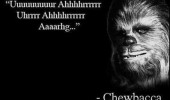 star wars movie film chewbacca quote funny pics pictures pic picture image photo images photos lol