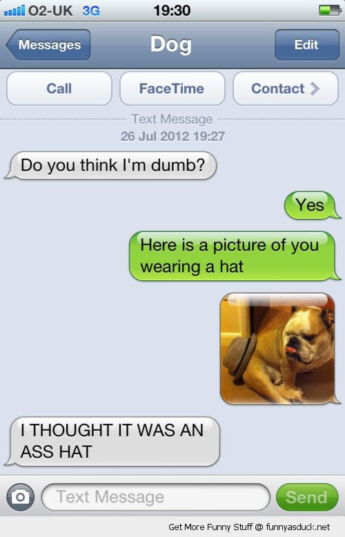 texts from dog sms iphone am i dumb ass hat funny pics pictures pic picture image photo images photos lol