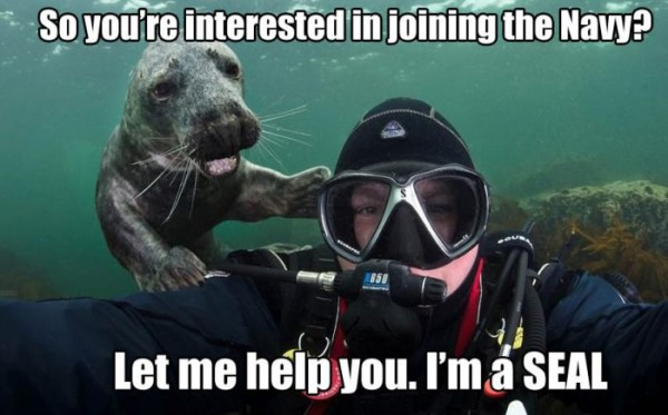 scuba diver under water animal interested joining navy help you i'm seal funny pics pictures pic picture image photo images photos lol