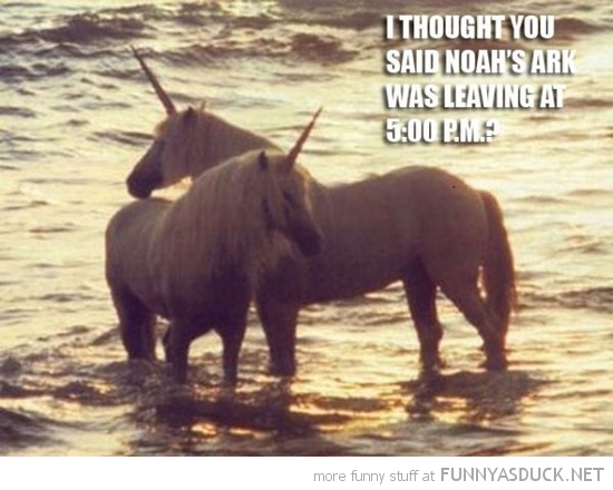 unicorns standing water noahs ark coming 5 animals funny pics pictures pic picture image photo images photos lol