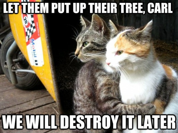 watching cats lolcats animals let them put up xmas christmas tree destroy later funny pics pictures pic picture image photo images photos lol